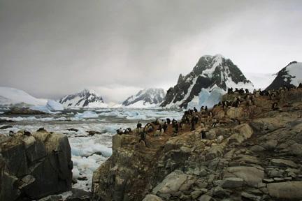 sf_antarctica_11