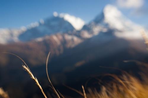 sf_Nepal_0137_091019
